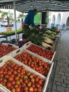 Marktstand Gärtnerei Prentl am Grünen Markt Rosenheim