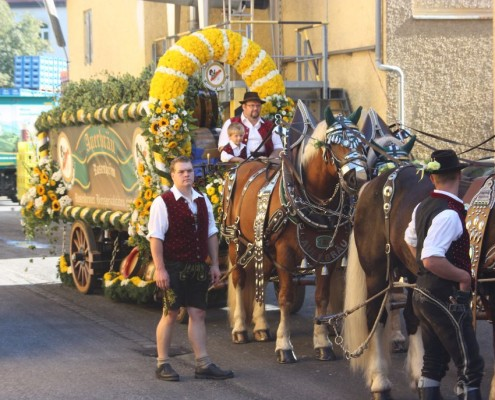 Sechs Kaltblüter ziehen den Bierwagen.